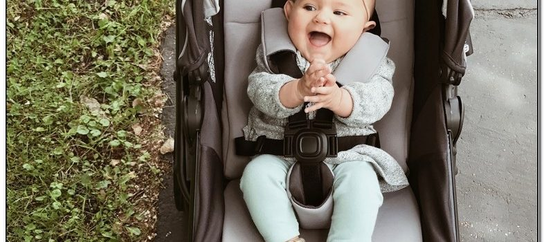 4moms Moxi Stroller Accessories