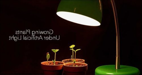 Artificial Sun Lamp For Plants