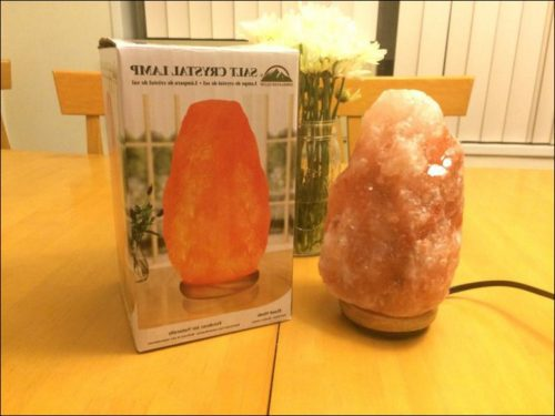 Bed Bath And Beyond Salt Lamp Light Bulb