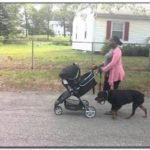 Best Stroller For Dog Walking