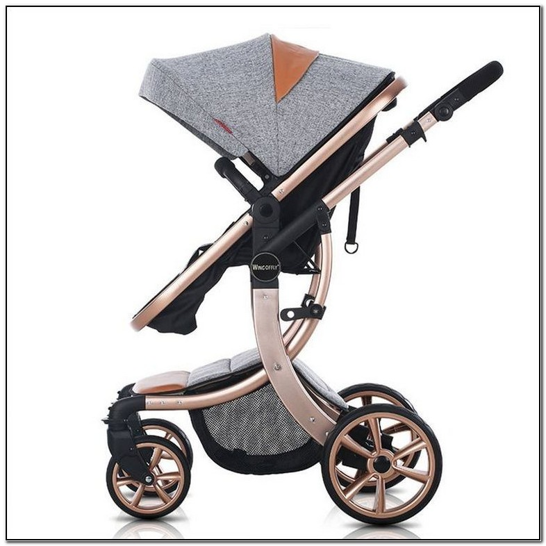 Best Strollers For Newborns 2017