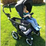 Bugaboo Double Stroller Reviews