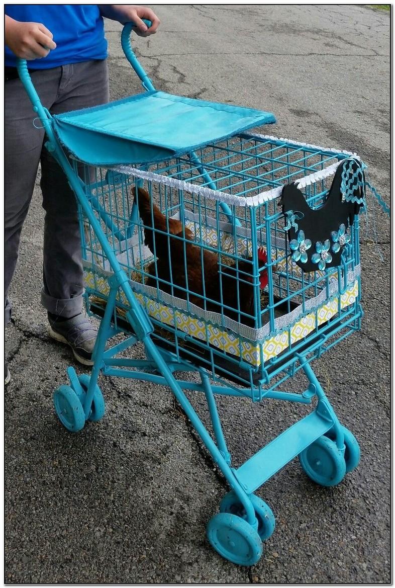 Chicken Stroller