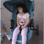 Disneyland Stroller Rental Reviews