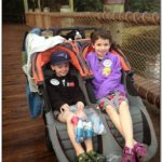 Double Stroller Rental Orlando