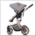 Most Expensive Strollers 2017