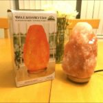 Salt Rock Lamp Bed Bath Beyond