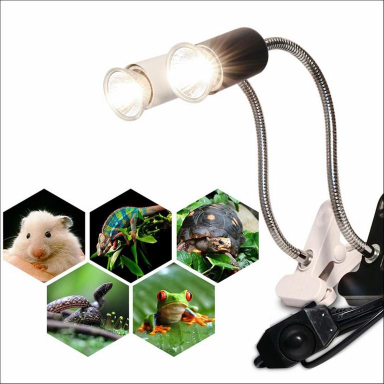 Turtle Heat Lamp Holder