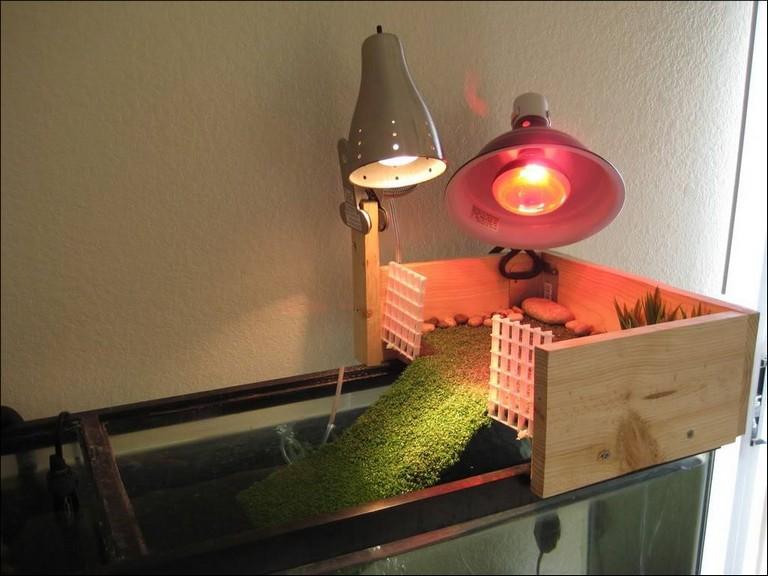 Turtle Heat Lamp How Long