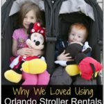 Walt Disney World Stroller Rental Reviews