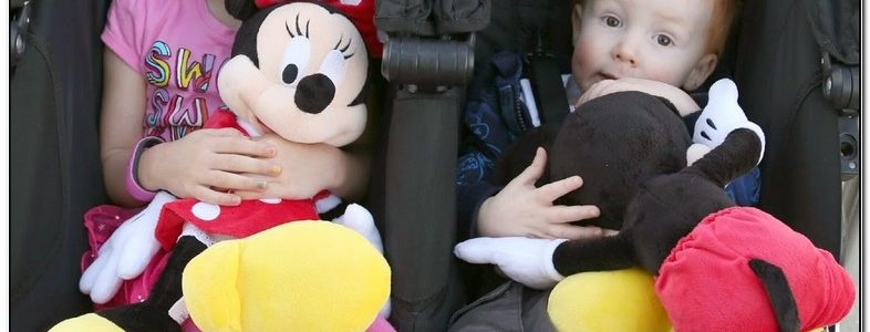 Walt Disney World Stroller Rental Reviews