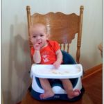 Toddler Booster Seat For Table Reviews