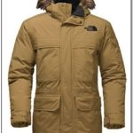 Best Cold Weather Jacket In The World