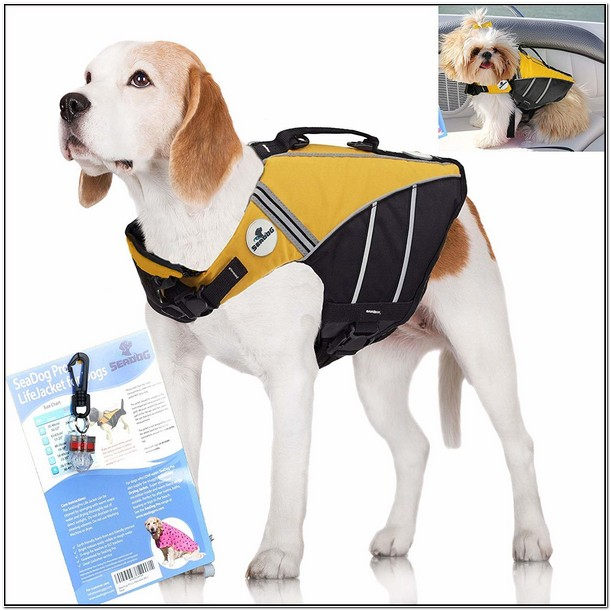 Best Dog Life Jacket Amazon