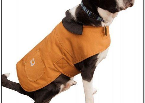 Carhartt Dog Chore Jacket