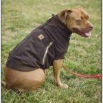 Carhartt Dog Jacket Green