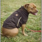 Carhartt Dog Jacket Uk