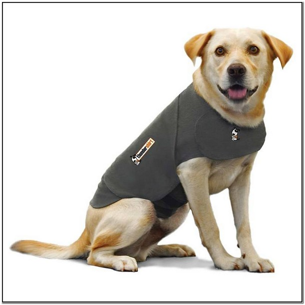 Dog Calming Jacket