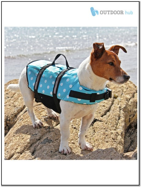 Dog Shark Life Jacket Canada