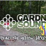 Getting Rid Of Yellow Jackets With Gasoline