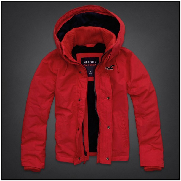 Hollister Jackets Mens Sale