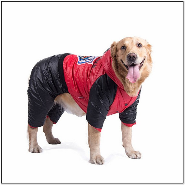 Large Dog Jackets For Winter