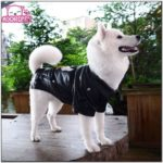 Leather Jacket For Large Dogs