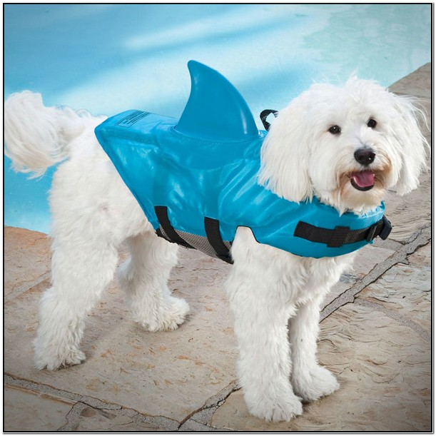 Shark Fin Dog Life Jacket