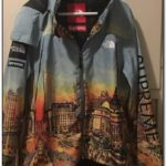 Supreme X North Face Skyline Jacket For Sale