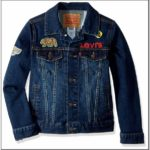 Toddler Boy Levi Jean Jacket