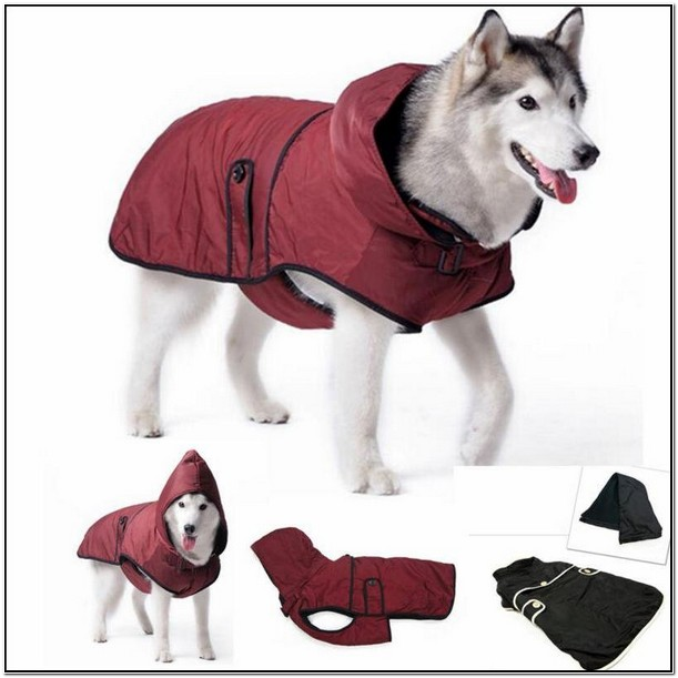 Winter Jackets For Large Breed Dogs