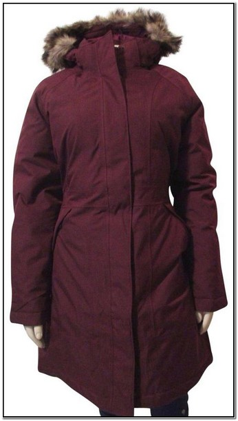 Womens North Face Winter Jacket With Hood
